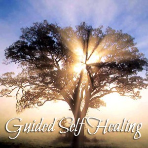 Guided Self Healing Unconditionalroots.com